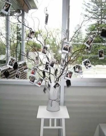 On-tree-photo-hs