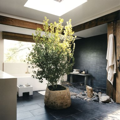 Natural bathroom with plant inside