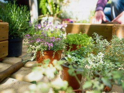 Gallery-1496598531-person-preparing-window-box-for-planting