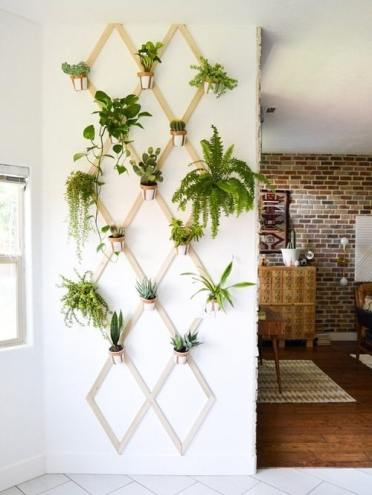 28wall-hanging-plant-decor-ideas-1