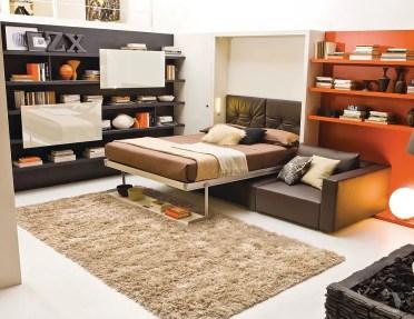 Versatile-and-cozy-murphy-bed