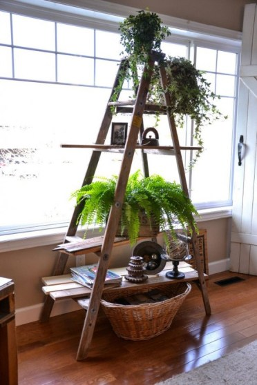 Decor-ideas-with-ladders-32-554x830-1