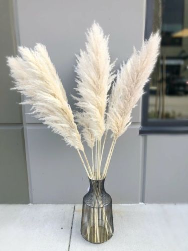1-grass-decoration-ideas-and-tips12