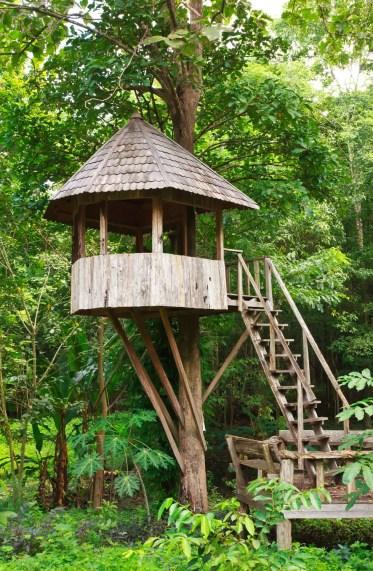 Graziosa-casa-di-legno-albero-royalty-free-image-188149225-1567115847