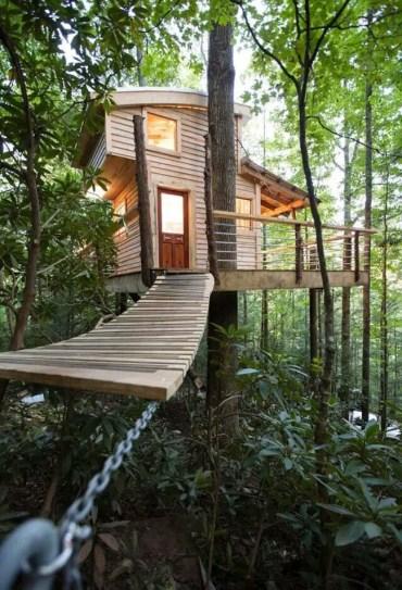Casa sull'albero-4