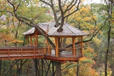Treehouse-foto-esempio2018-04-30-at-1.40.02-pm