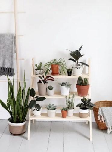 Diy-ladder-plant-stand-1