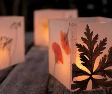 Pressed-flower-luminarias