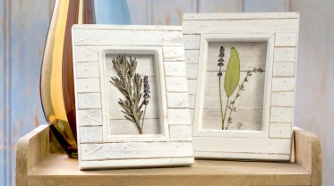 Pressed-flowers-in-frames