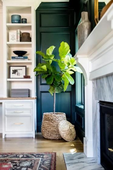 Studiomcgees-favorite-plants-900x1350-1