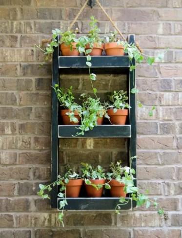 Wood-planter-hang-for-the-wall
