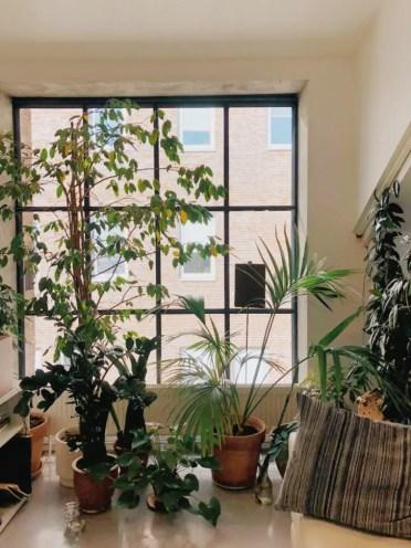 Best-urban-jungle-interior-style-ideas-1001gardens.org-8-728x971-1