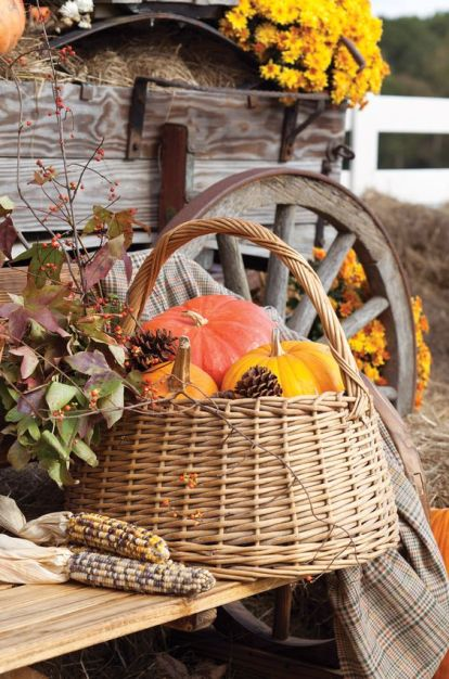 02-a-basket-with-colorful-pumpkins-and-pinecones-is-a-perfect-idea-for-indoor-and-outdoor-decor