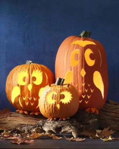1503853073-gallery-owl-pumpkins-1