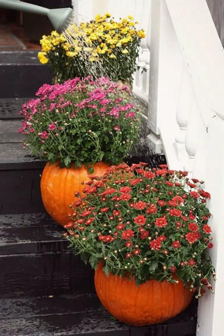 1506107582-watering-pumpkin-planters