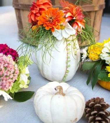 Mini-pumpkin-vases-pin