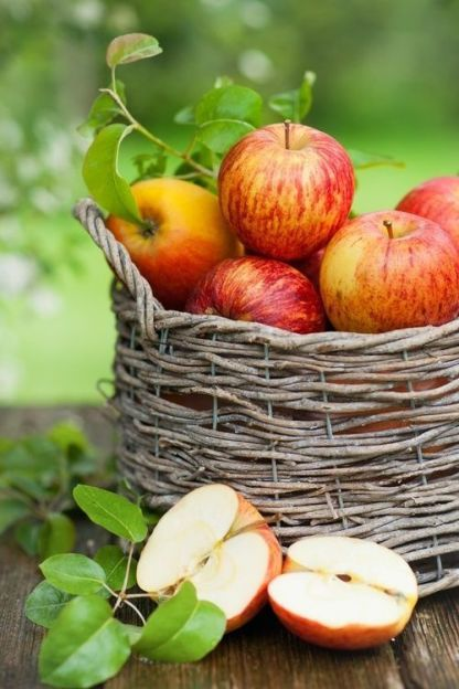 A-basket-with-apples-and-greenery-is-a-lovely-fall-decoration-in-rustic-style-make-it-easily