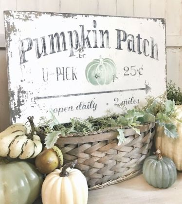 A-shabby-chic-sign-with-black-letters-and-a-green-pumpkin-placed-on-a-basket-with-greenery-and-surrounded-by-pumpkins