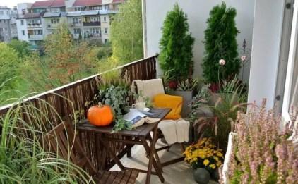 Balkon-herbstlich-dekorieren-ziergraser-gelbe-chrysanthemen-kuscheldecke-stuhl