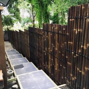 Bamboo-fence-side-yard-walkway-ideas