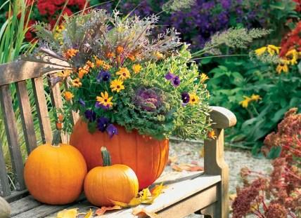 C-pumpkin-planter-lead