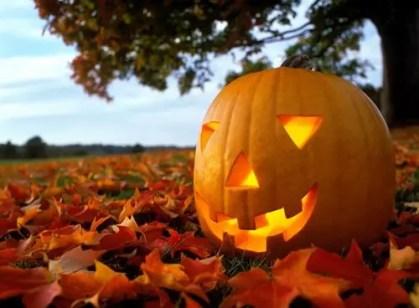 Halloween-pumpkin-carving-ideas-126