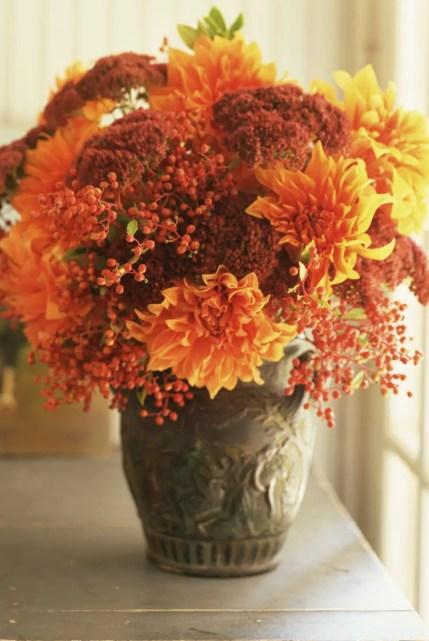 Orange-flowers