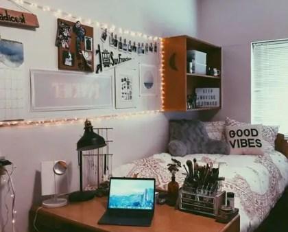 1-college-apartment-living-room-ideas-16