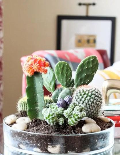 Kleine-Kaktus-Dekoration-Ideen5-1