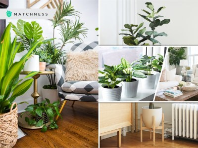 The use of fake plants for your home decoration2