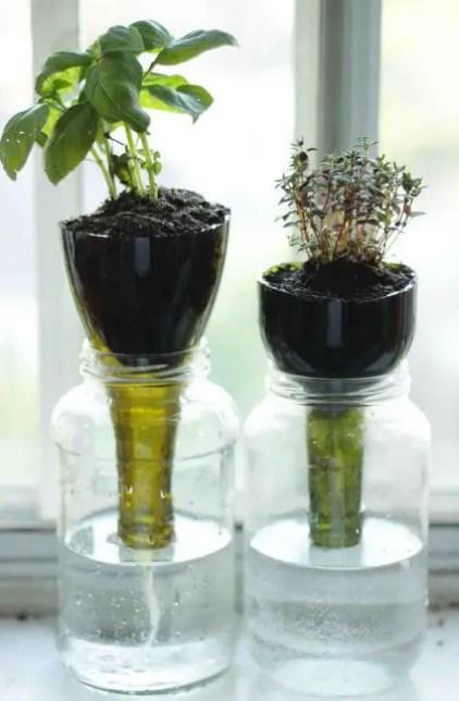 1438717995-glass-planter