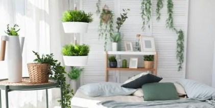 Raumdekorationsideen-mit-Pflanzen13