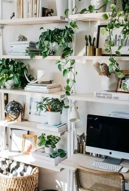 Beleben-Sie-Ihren-Arbeitsplatz-mit-Topfgrün-und-Kletterpflanzen-leicht-sie-machen-den-Raum-einladend