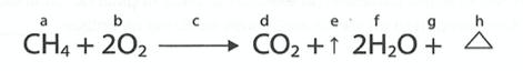 Acción química