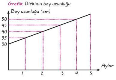 Çizgi ve Sütun ve Daire Grafikleri