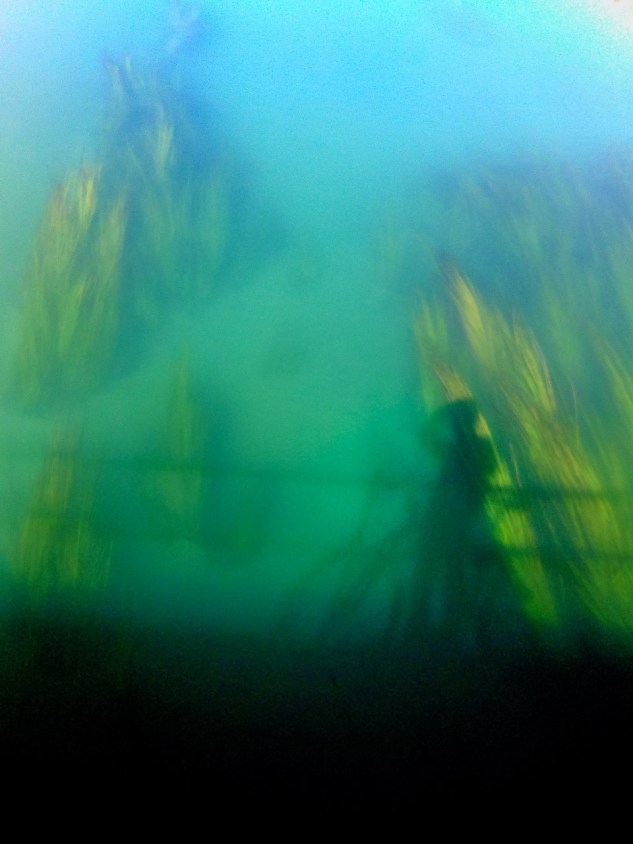 Canal Júcar-Turia, Picassent. © mateoht 1990-2013 - http://lafotodeldia.net