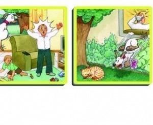Povestiri amuzante din casa 15