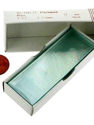 Set 12 lame pentru microscop