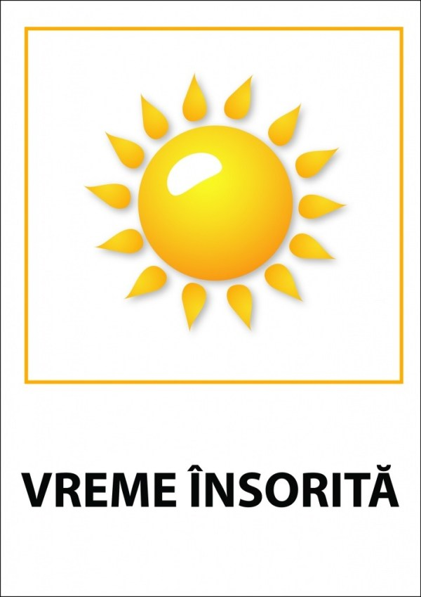 Termometru demonstrativ 14