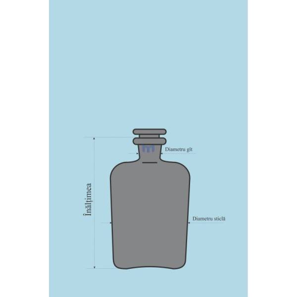Sticla bruna pentru reactivi 5