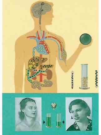 Metabolismul glucidic