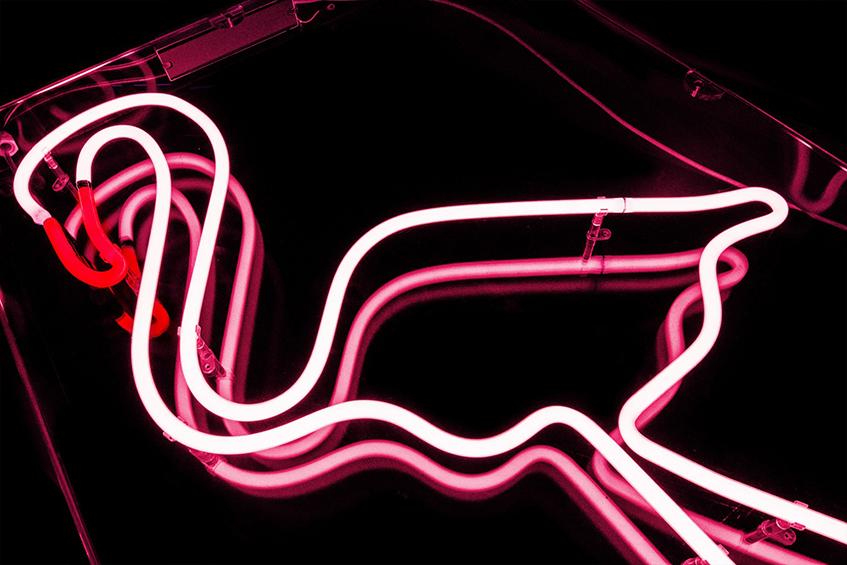 "alt=""Flamingo mania - Fenicotteri rosa - Insegna neon - Kemp Llondon - Hire flamingo"""