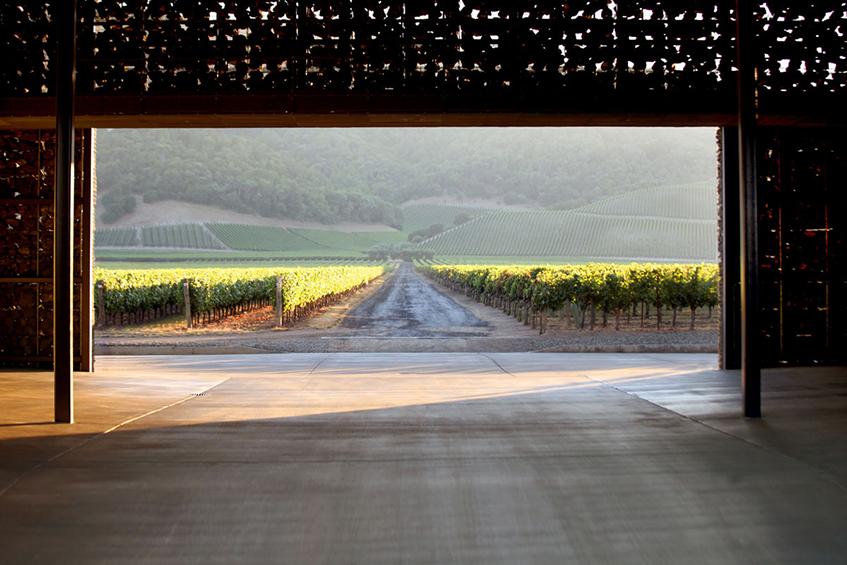 """alt=""""Architettura e vino - Cantina Dominus - California - progetto di Herzog & De Meuron - vista verso la vigna"""""""