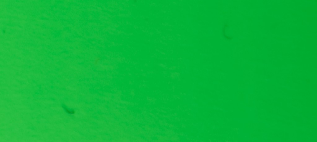 441 / Neon Green