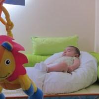 O ninho para o bebê dormir melhor