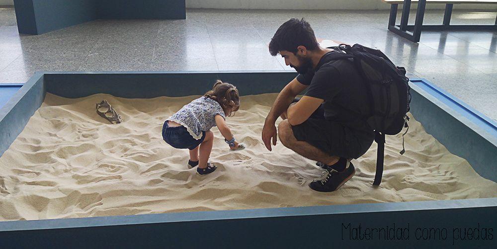 museo-ciencias-dinosaurios-descubrir