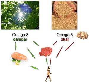 Omega-3-i-balans1