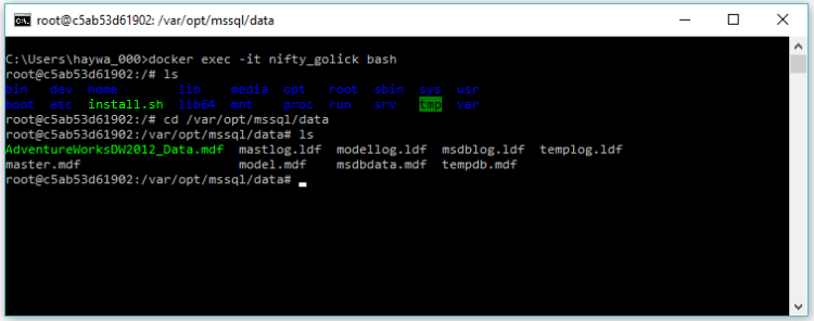 attach a SQL Server database in a Linux Docker container - Bash shell without SSH