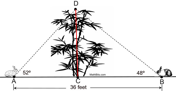 Use The Information In The Diagram To Determine The Height