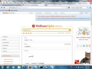 Wolfram Alpha Screen Shot